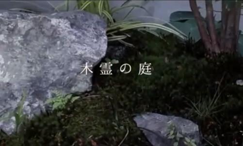 「こだまの庭」 / そらやLandscape